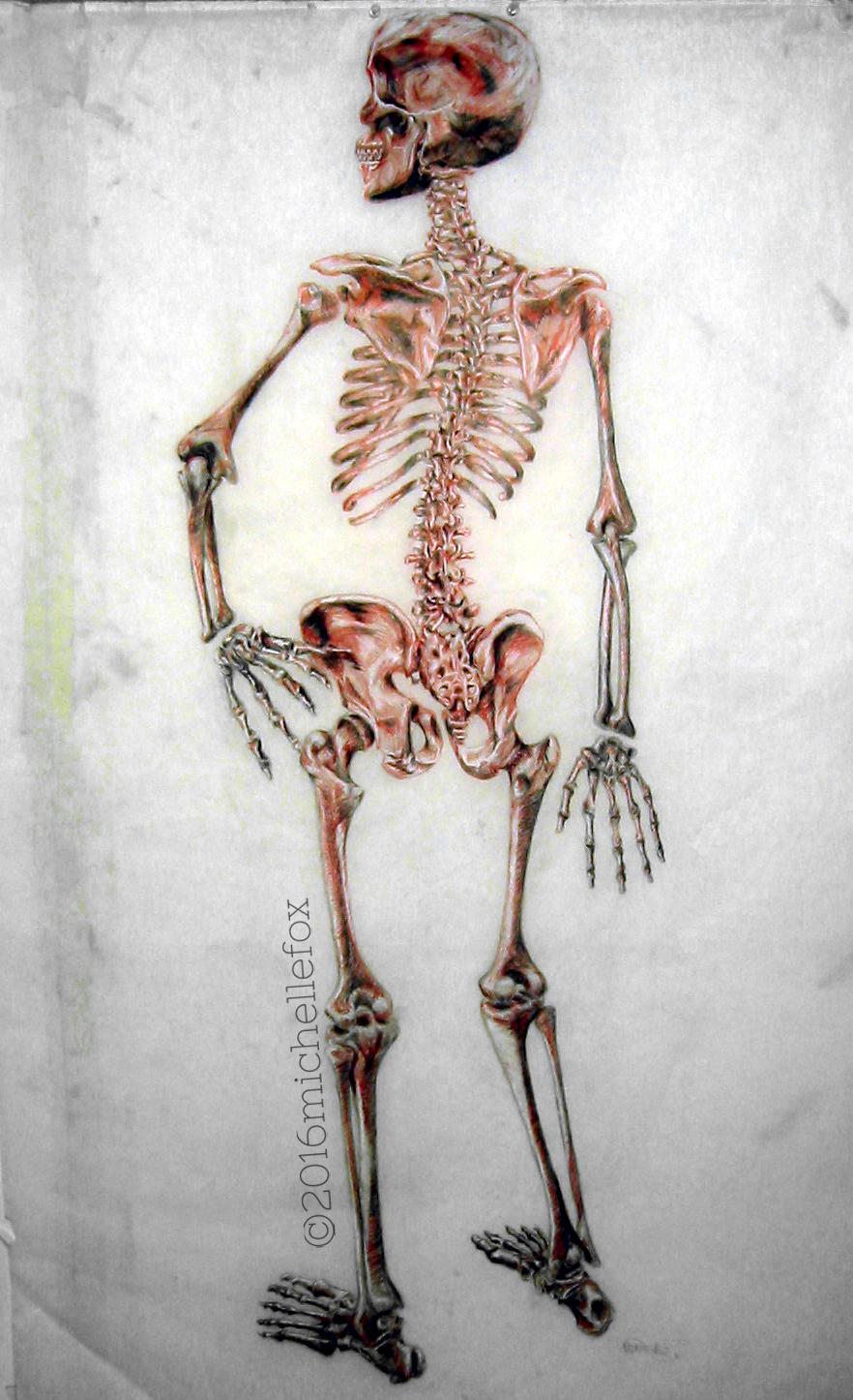 2006_05-skeleton-copy